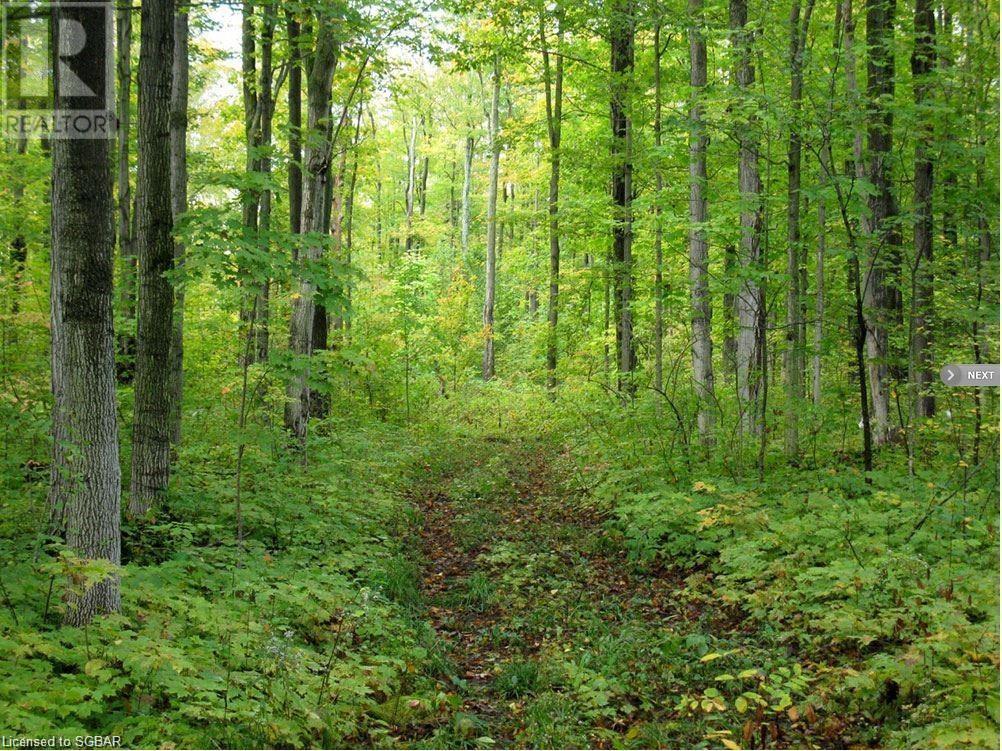 1614 Horseshoe Valley Road E, Oro-Medonte, Ontario  L0K 1E0 - Photo 8 - 40151319