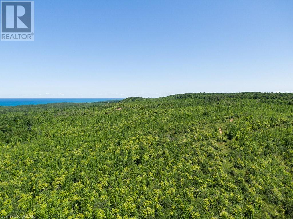 17-18 A Concession, Meaford (Municipality), Ontario  N0H 1B0 - Photo 11 - 40153173