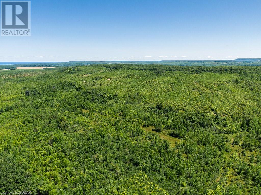 17-18 A Concession, Meaford (Municipality), Ontario  N0H 1B0 - Photo 23 - 40153173