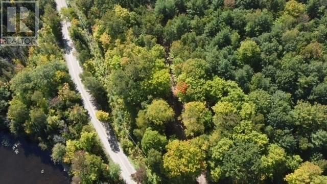 Lot 1 Bass Lake  Rd, Galway-Cavendish And Harvey, Ontario  K0M 1A0 - Photo 18 - X5362744