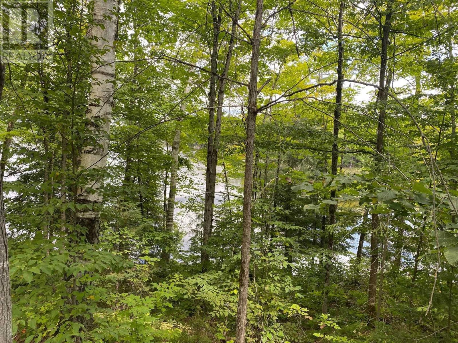 Lot 1 Bass Lake  Rd, Galway-Cavendish And Harvey, Ontario  K0M 1A0 - Photo 6 - X5362744