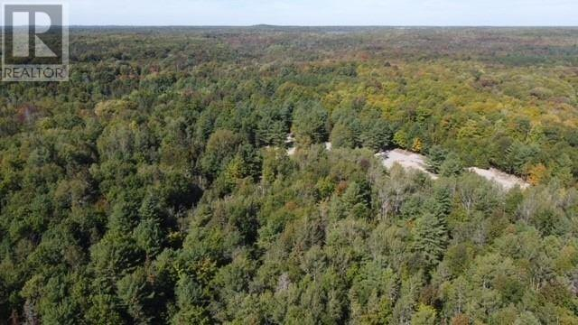 Lot 1 Bass Lake  Rd, Galway-Cavendish And Harvey, Ontario  K0M 1A0 - Photo 8 - X5362744