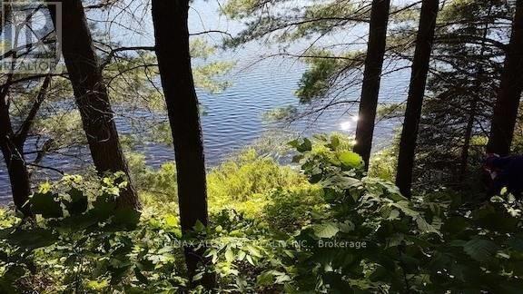 1134 Walkers Line, Algonquin Highlands, Ontario  K0M 2K0 - Photo 14 - X5376587