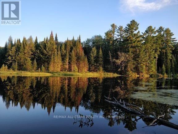 1134 Walkers Line, Algonquin Highlands, Ontario  K0M 2K0 - Photo 28 - X5376587