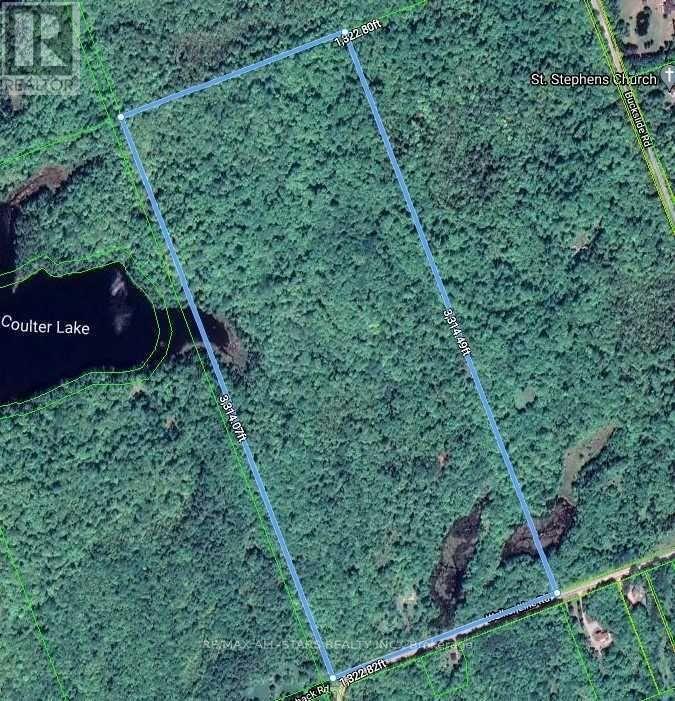 1134 Walkers Line, Algonquin Highlands, Ontario  K0M 2K0 - Photo 3 - X5376587