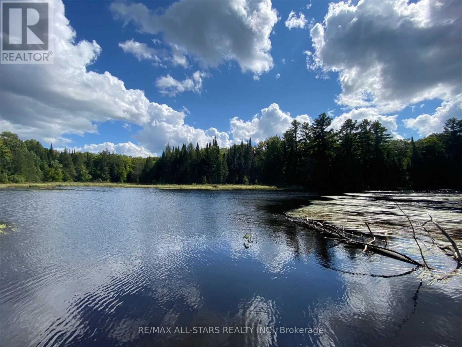 1134 Walkers Line, Algonquin Highlands, Ontario  K0M 2K0 - Photo 31 - X5376587