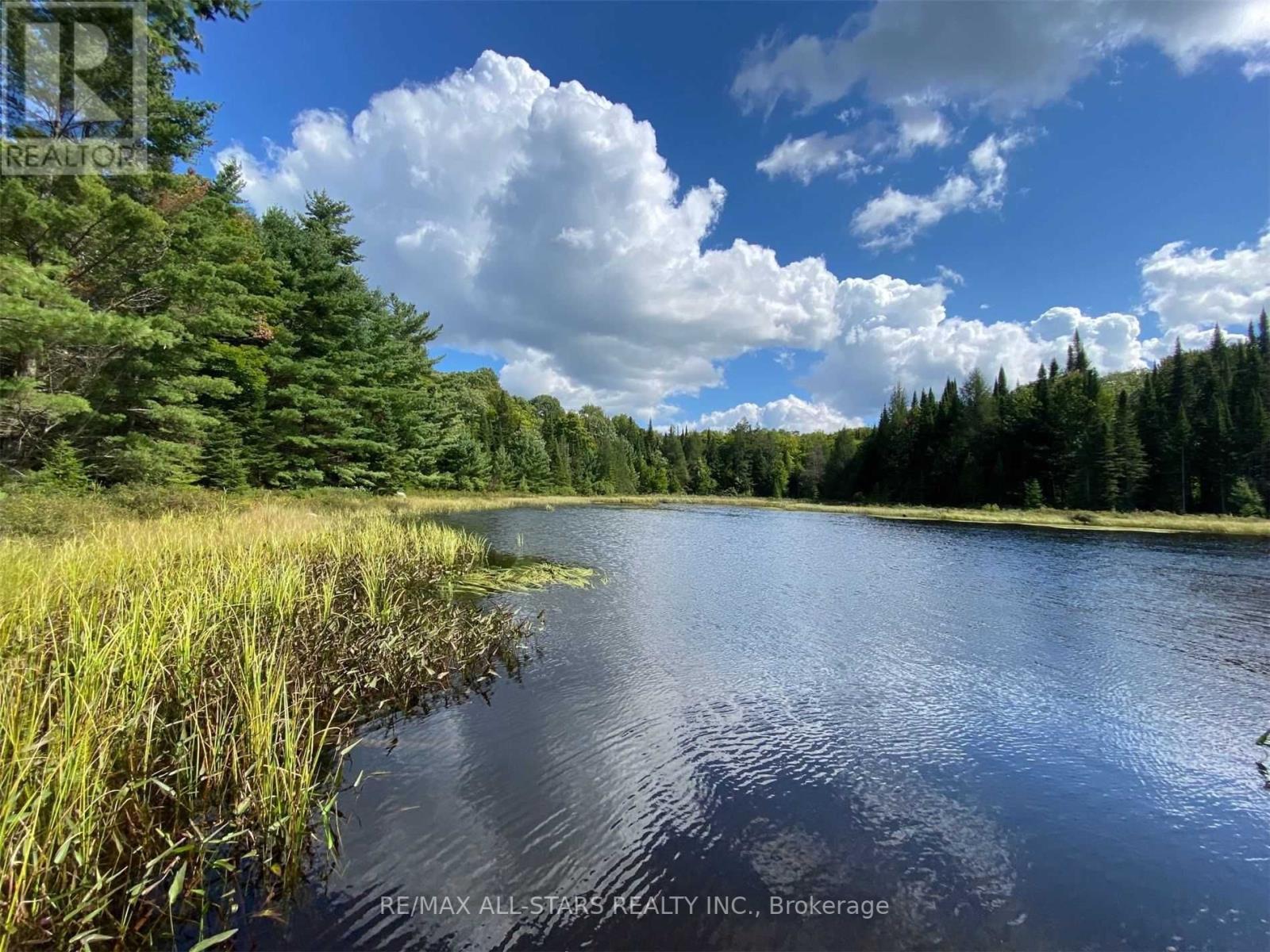 1134 Walkers Line, Algonquin Highlands, Ontario  K0M 2K0 - Photo 32 - X5376587