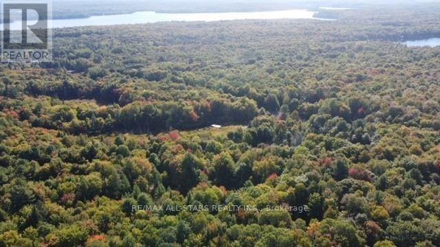 1134 Walkers Line, Algonquin Highlands, Ontario  K0M 2K0 - Photo 35 - X5376587