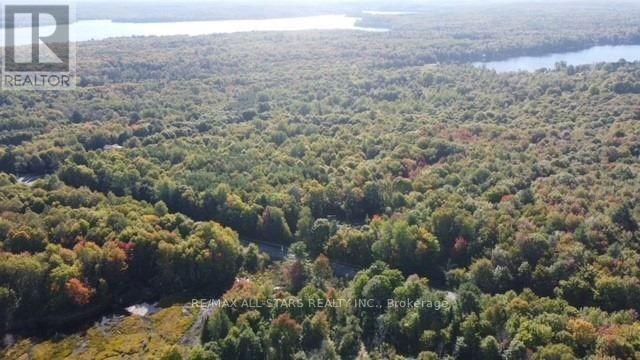1134 Walkers Line, Algonquin Highlands, Ontario  K0M 2K0 - Photo 37 - X5376587