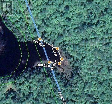 1134 Walkers Line, Algonquin Highlands, Ontario  K0M 2K0 - Photo 4 - X5376587
