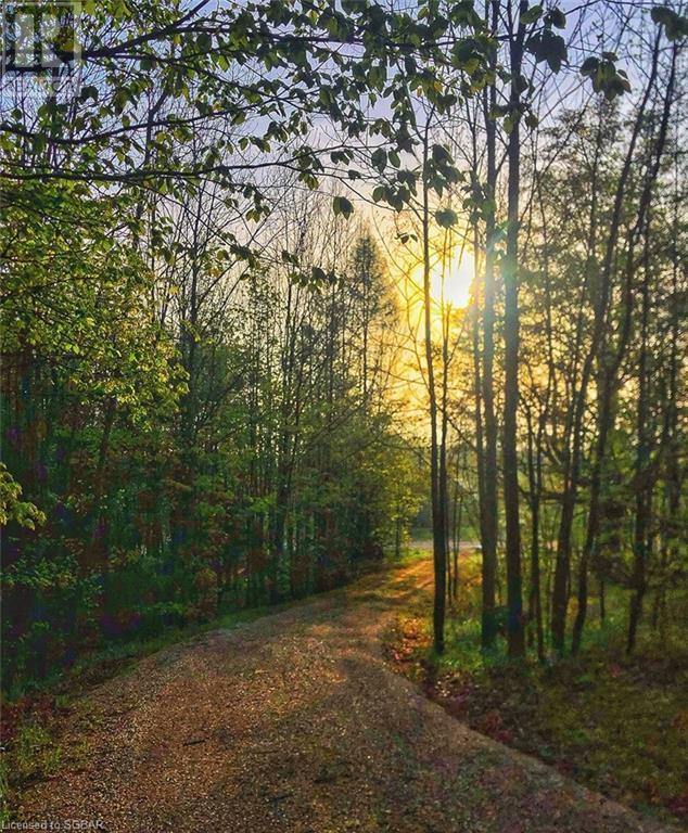 200 Valley Crescent, Grey Highlands, Ontario  N0C 1H0 - Photo 47 - 40168950