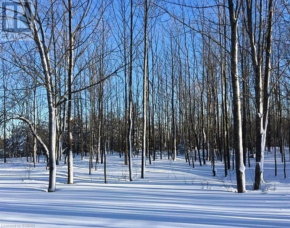 200 Valley Crescent, Grey Highlands, Ontario  N0C 1H0 - Photo 48 - 40168950