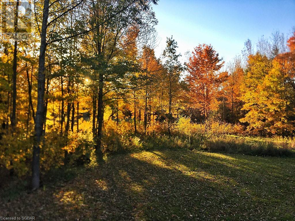 200 Valley Crescent, Grey Highlands, Ontario  N0C 1H0 - Photo 49 - 40168950