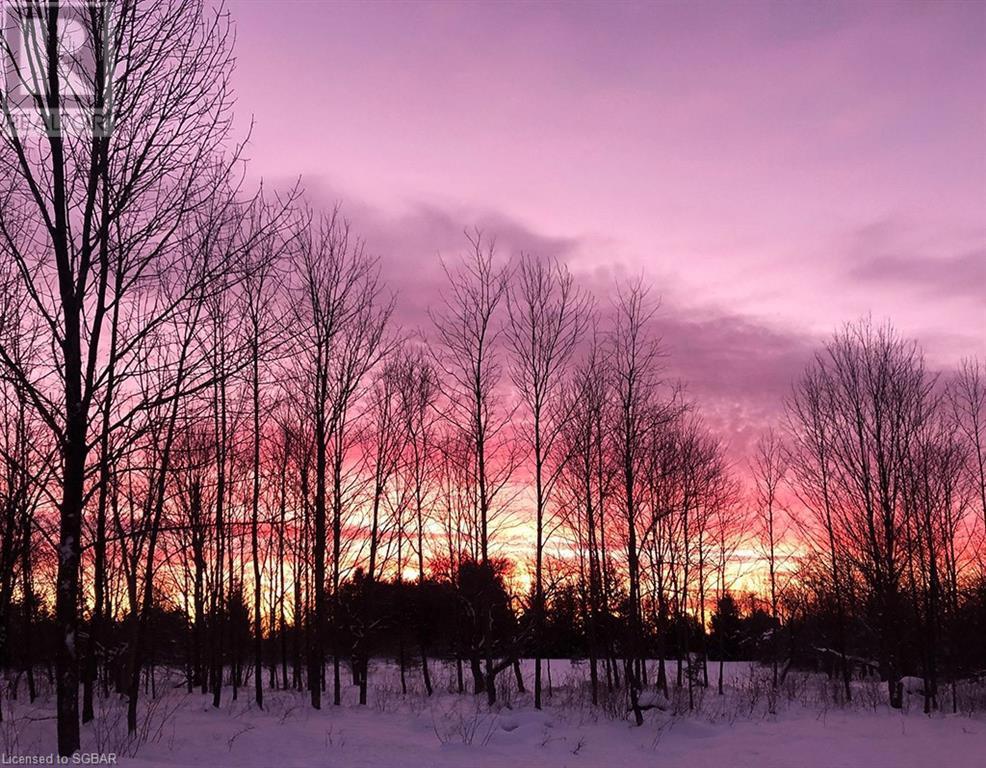200 Valley Crescent, Grey Highlands, Ontario  N0C 1H0 - Photo 50 - 40168950