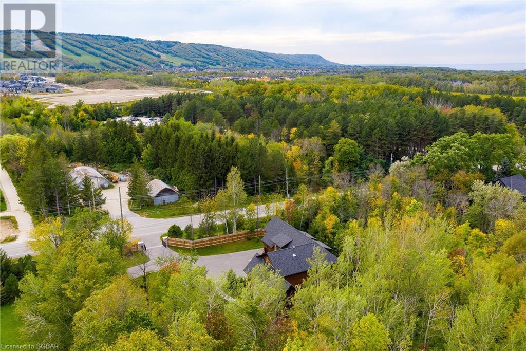 133 Osler Bluff Road, Collingwood, Ontario  L9Y 0W4 - Photo 43 - 40167901