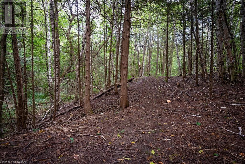 133 Osler Bluff Road, Collingwood, Ontario  L9Y 0W4 - Photo 39 - 40167901