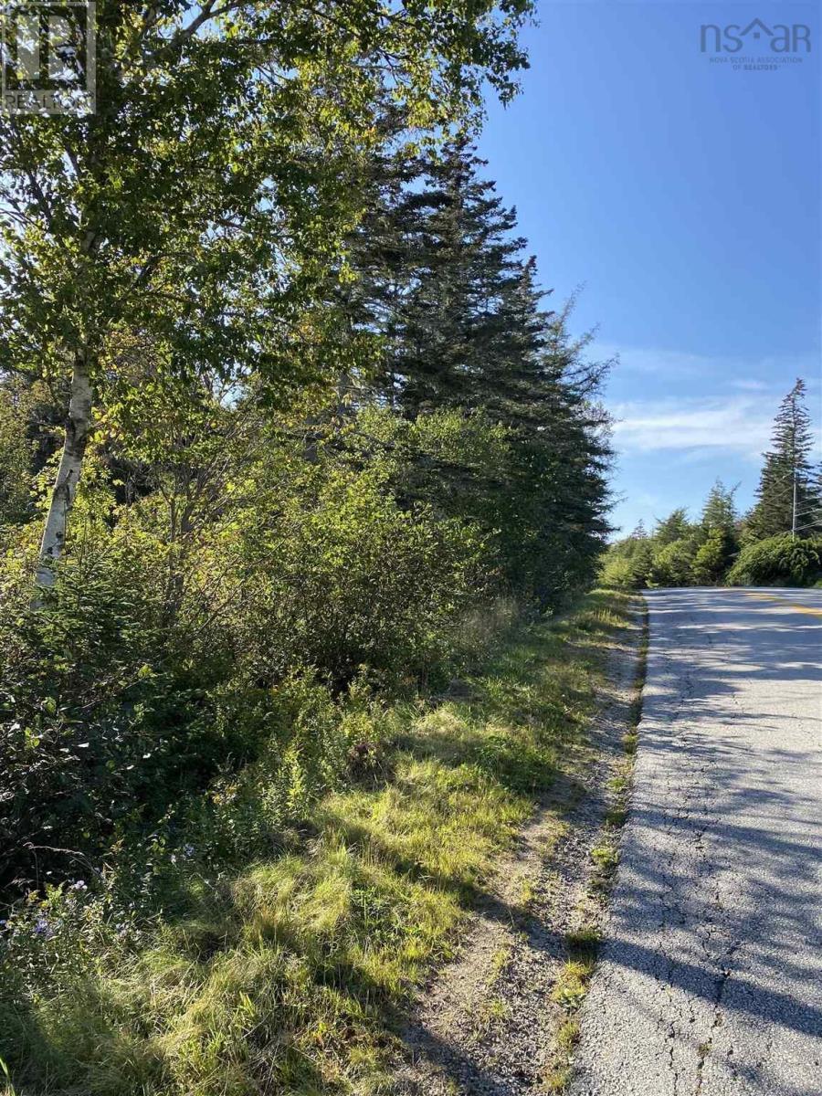 Lot Greenville Road, Greenville, Nova Scotia  B5A 5J6 - Photo 5 - 202124463