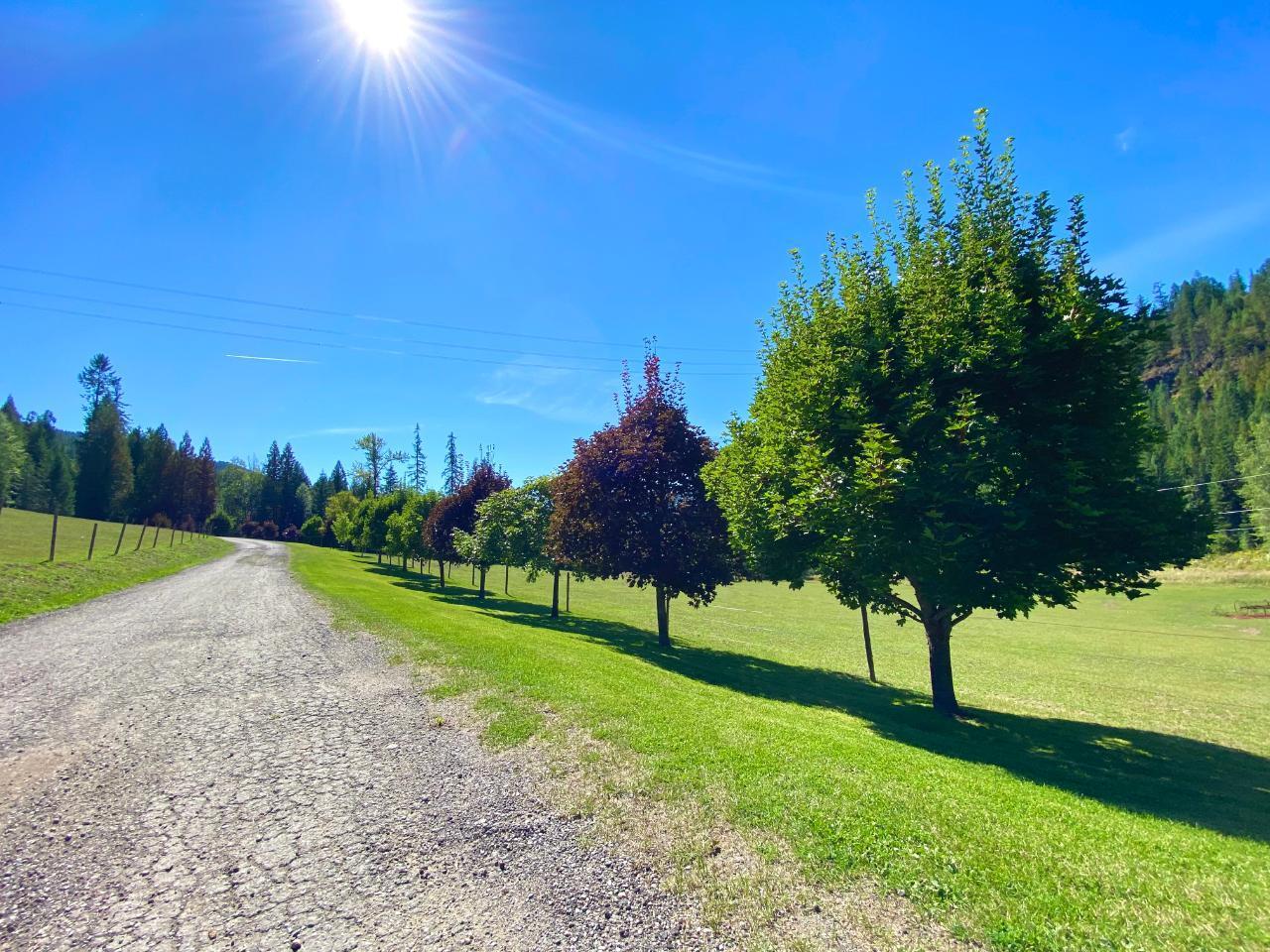 2505 Barley Road, Rossland, British Columbia  V0G 1Y0 - Photo 5 - 2461148