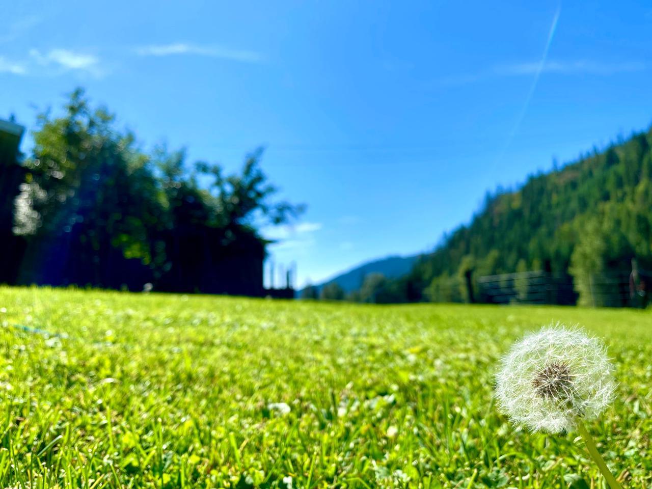 2505 Barley Road, Rossland, British Columbia  V0G 1Y0 - Photo 43 - 2461148