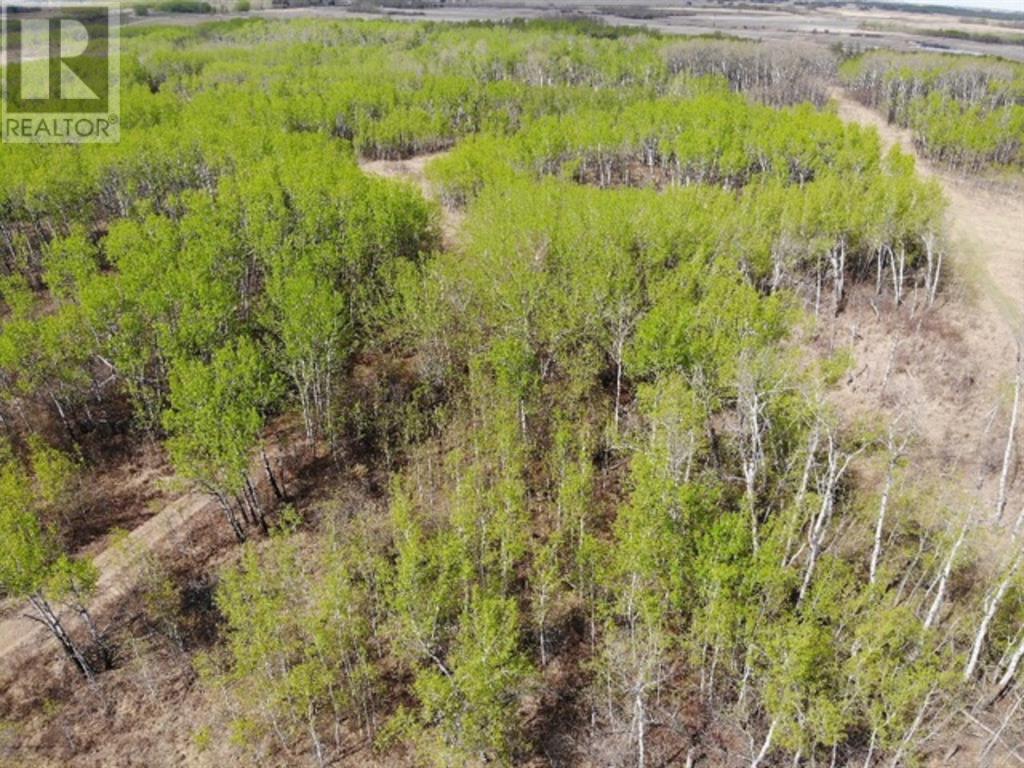 450031 73 Range, M.d. Of, Alberta  T9W 1L5 - Photo 2 - A1150648