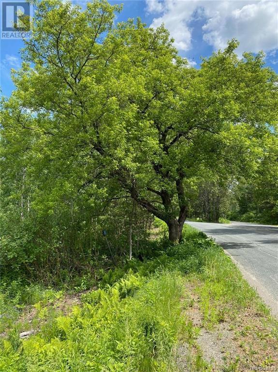Lot A-B Upper Kent Road, Upper Kent, New Brunswick  E7J 2E1 - Photo 8 - NB064017