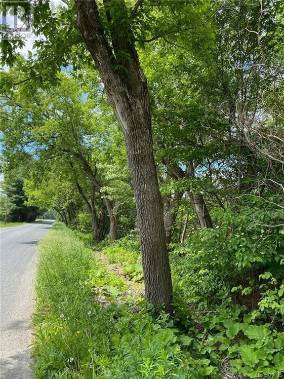 Lot A-B Upper Kent Road, Upper Kent, New Brunswick  E7J 2E1 - Photo 11 - NB064017