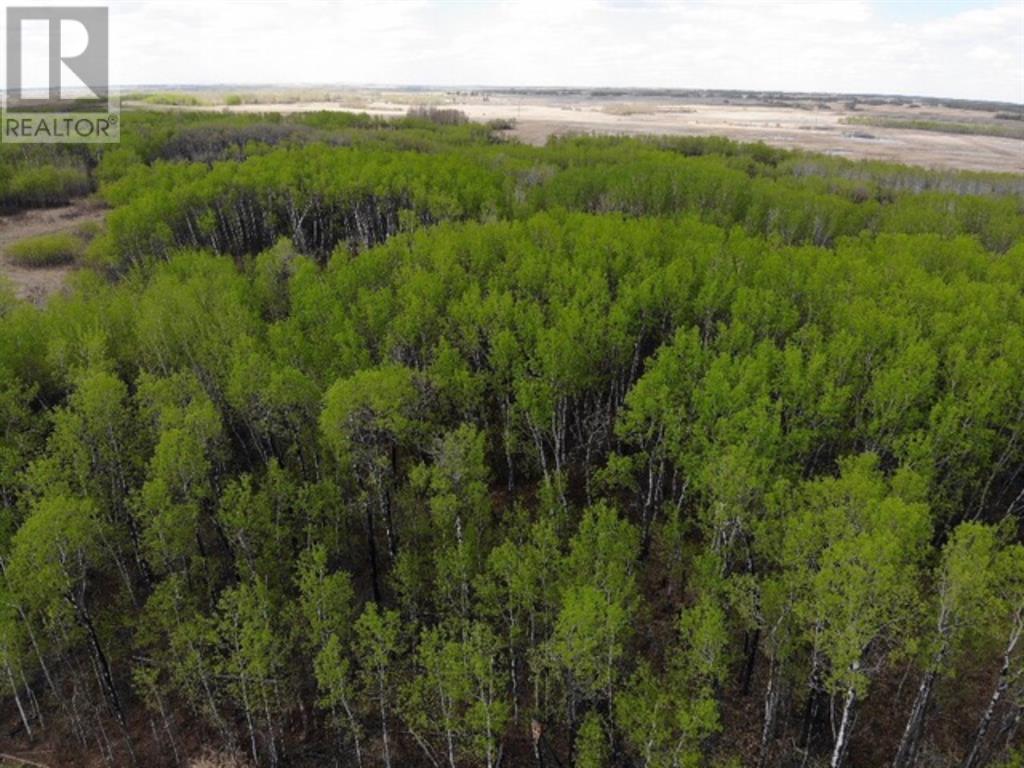 18 450031 73 Range, M.d. Of, Alberta  T9W 1L5 - Photo 3 - A1150682
