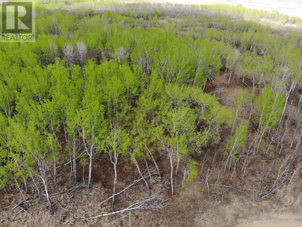 22 450031 73 Range, M.d. Of, Alberta  T9W 1L5 - Photo 1 - A1150688