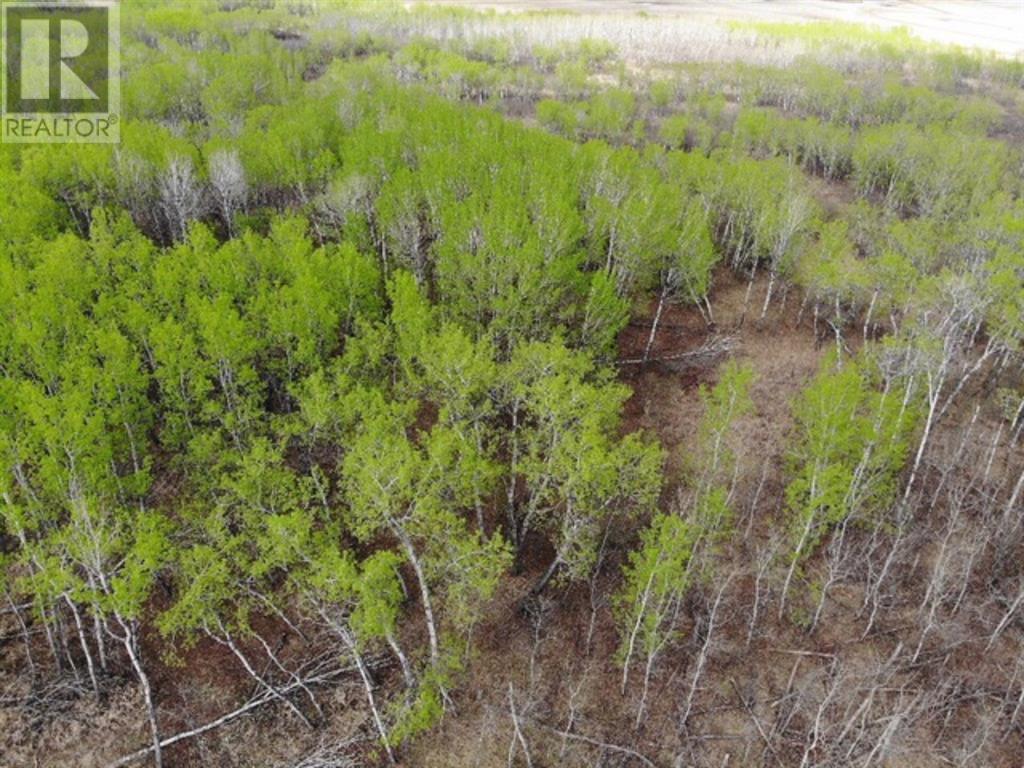 22 450031 73 Range, M.d. Of, Alberta  T9W 1L5 - Photo 3 - A1150688