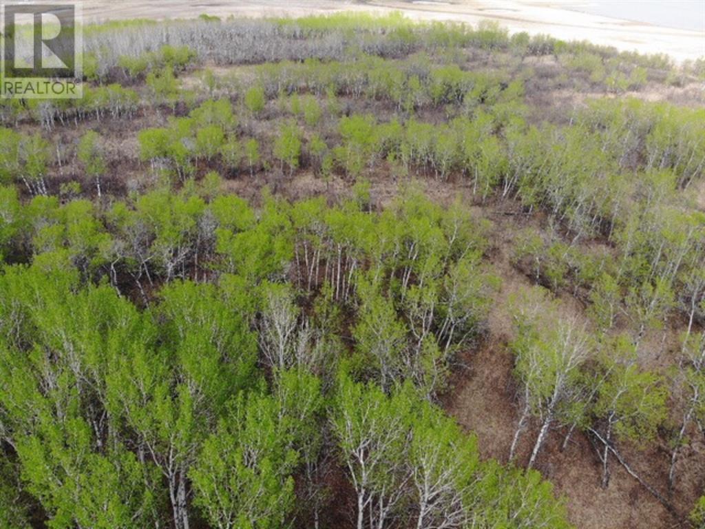 22 450031 73 Range, M.d. Of, Alberta  T9W 1L5 - Photo 4 - A1150688