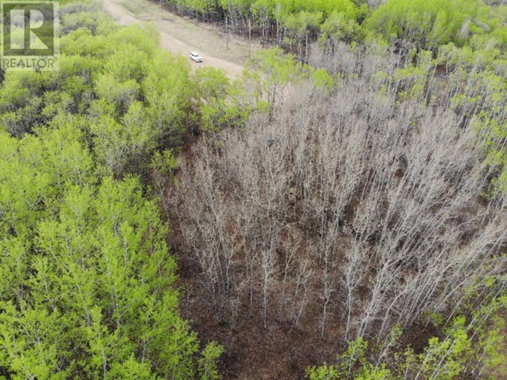 29 450031 73 Range, M.d. Of, Alberta  T9W 1L5 - Photo 2 - A1150695