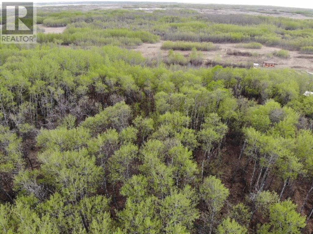 29 450031 73 Range, M.d. Of, Alberta  T9W 1L5 - Photo 4 - A1150695