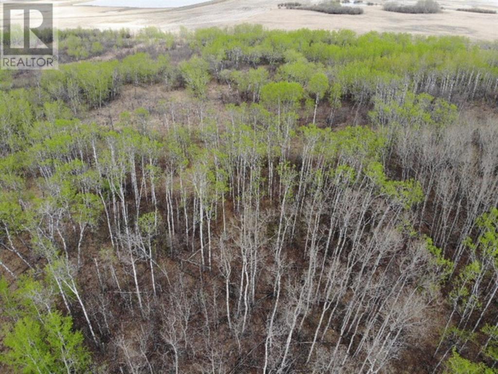 26 450031 73 Range, M.d. Of, Alberta  T9W 1L5 - Photo 3 - A1150693