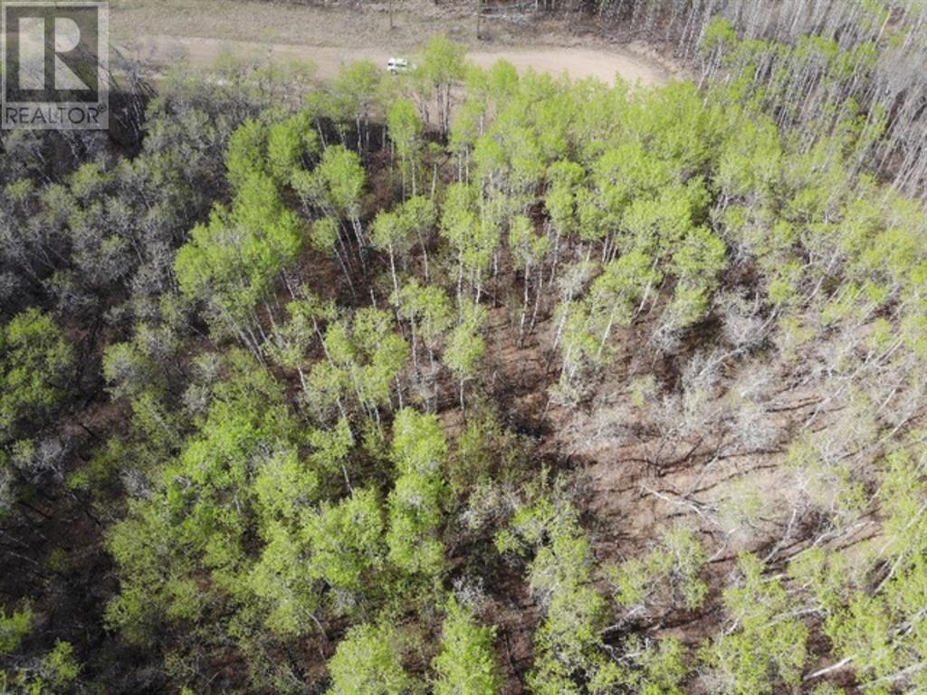 25 450031 73 Range, M.d. Of, Alberta  T9W 1L5 - Photo 4 - A1150699