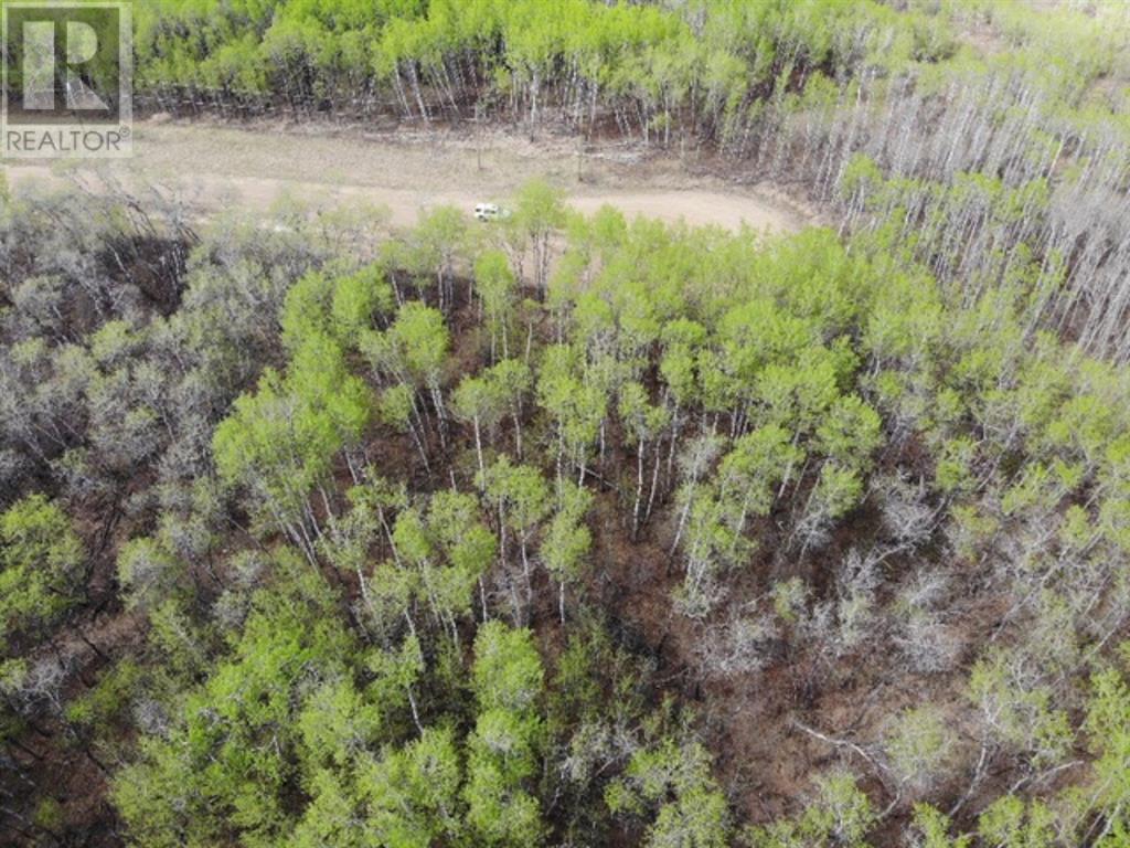 25 450031 73 Range, M.d. Of, Alberta  T9W 1L5 - Photo 5 - A1150699