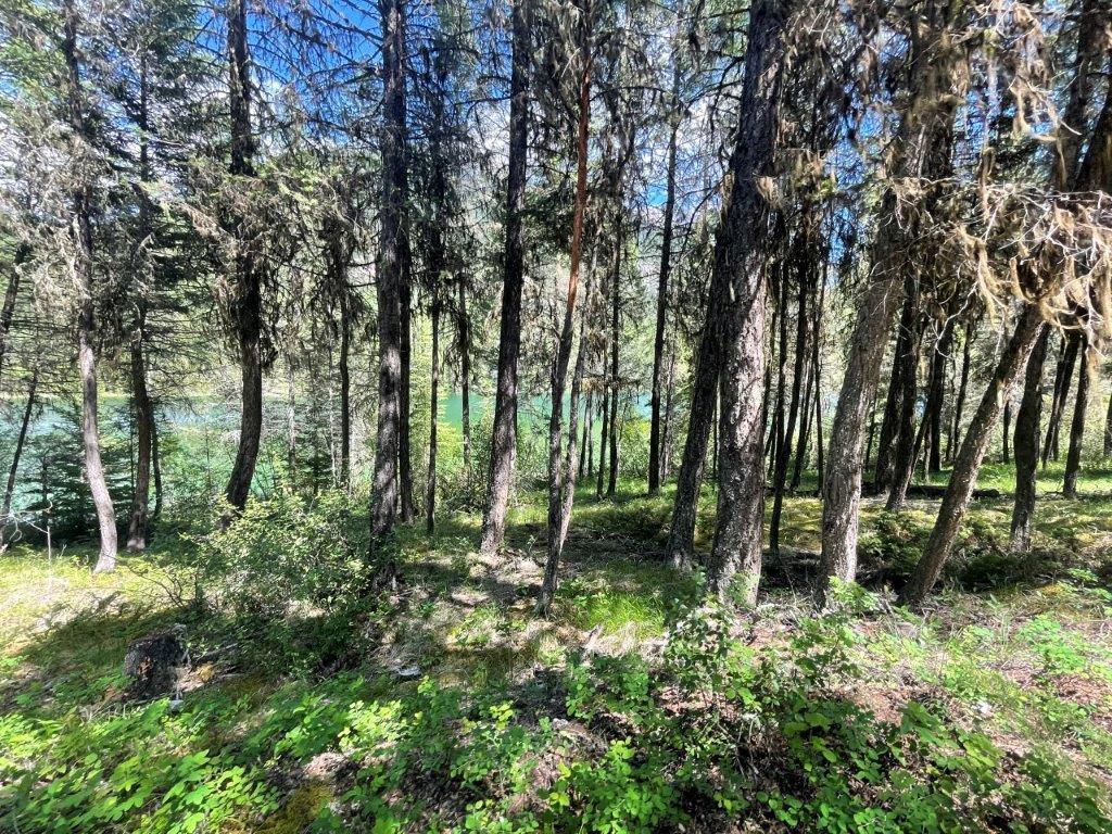 Dl 7561 Baptiste Trail, Radium Hot Springs, British Columbia  V0A 1M0 - Photo 13 - 2456990