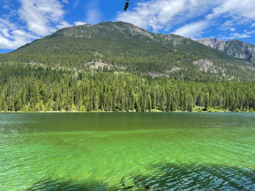 Dl 7561 Baptiste Trail, Radium Hot Springs, British Columbia  V0A 1M0 - Photo 9 - 2456990