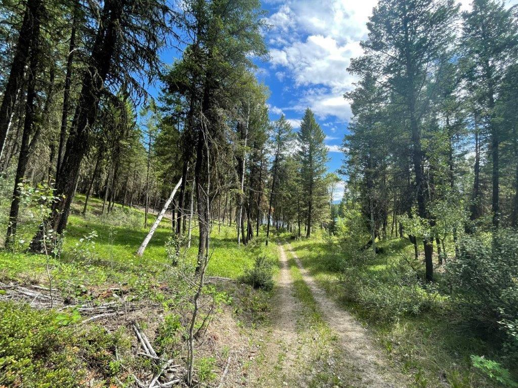Dl 7561 Baptiste Trail, Radium Hot Springs, British Columbia  V0A 1M0 - Photo 14 - 2456990