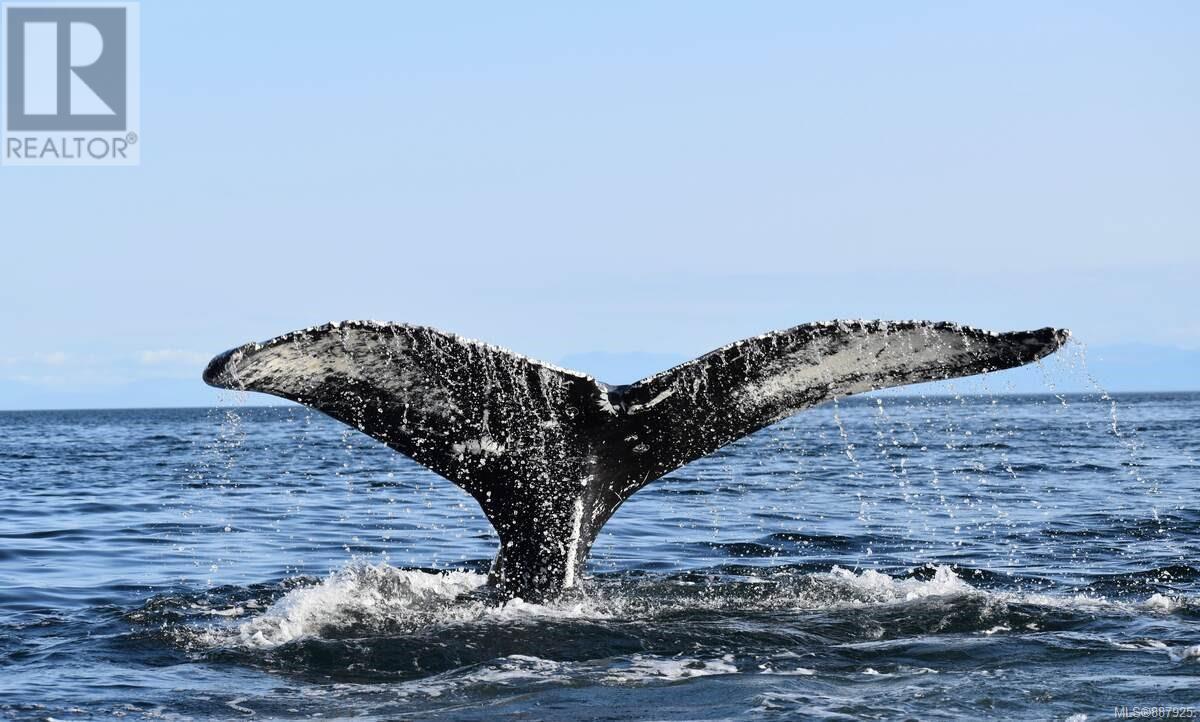 N/a Circle Island, Lasqueti Island, British Columbia  V0R 2J0 - Photo 31 - 887925