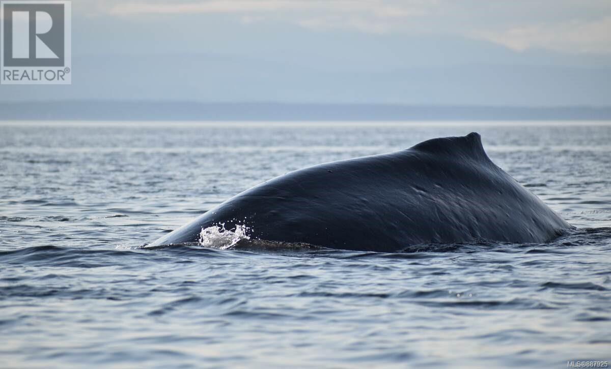 N/a Circle Island, Lasqueti Island, British Columbia  V0R 2J0 - Photo 32 - 887925
