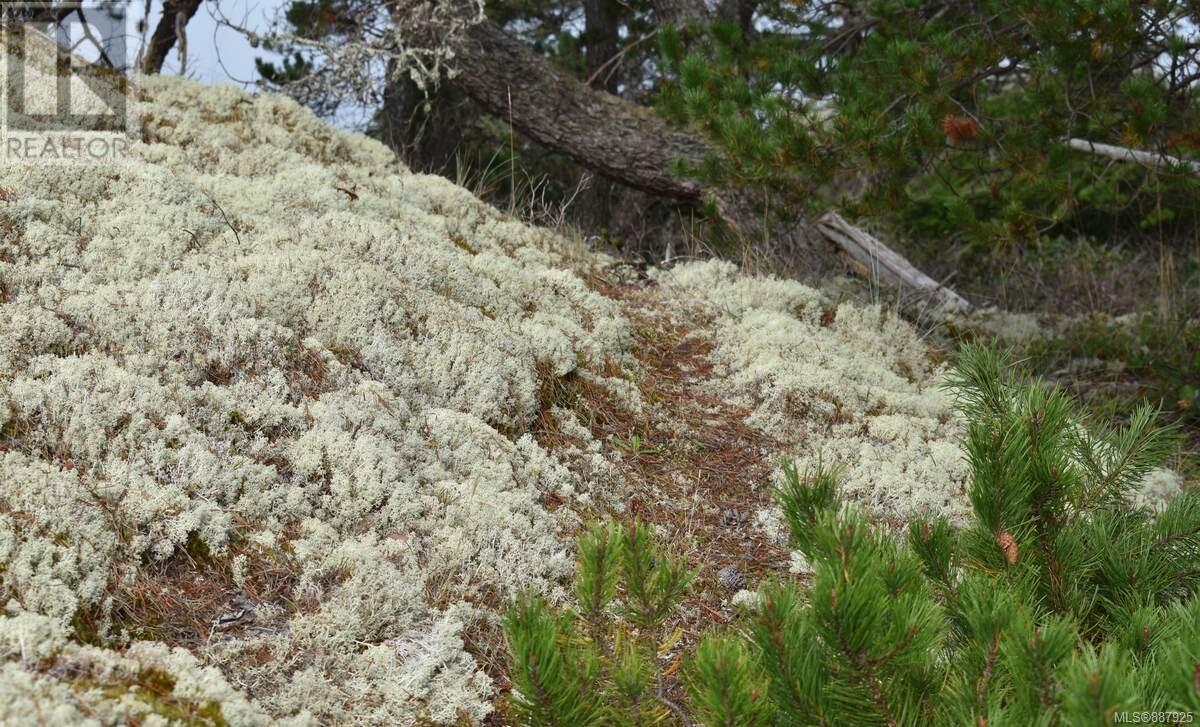N/a Circle Island, Lasqueti Island, British Columbia  V0R 2J0 - Photo 26 - 887925