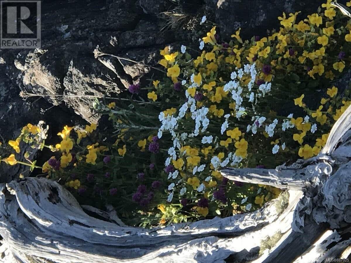 N/a Circle Island, Lasqueti Island, British Columbia  V0R 2J0 - Photo 13 - 887925