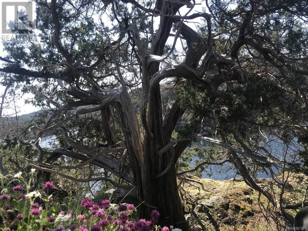 N/a Circle Island, Lasqueti Island, British Columbia  V0R 2J0 - Photo 12 - 887925