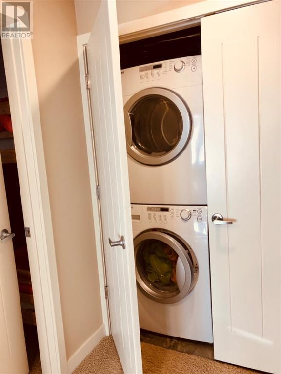 619 Chinook Cres In Castleview Ridge  Estates, M.d. Of, Alberta  T0K 1W0 - Photo 25 - A1152313