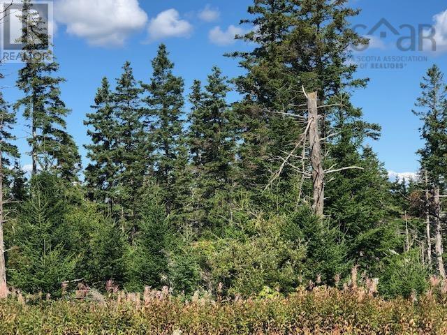 #4 Highway, St. Peter's, Nova Scotia  B0E 3B0 - Photo 4 - 202123225