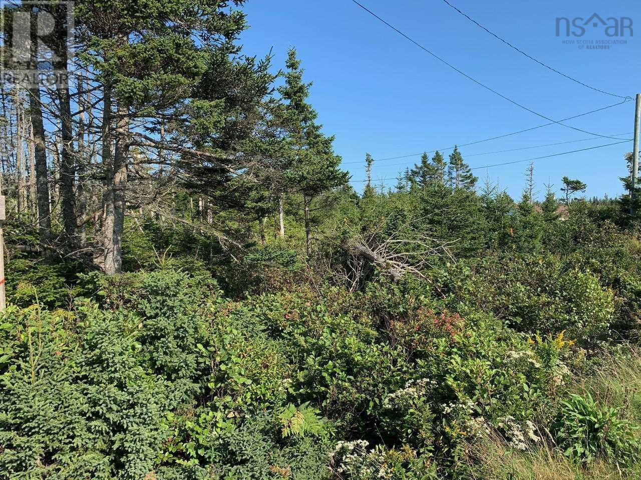 Lot A9 Ostrea Lake Road, Ostrea Lake, Nova Scotia  B0J 2L0 - Photo 1 - 202125328