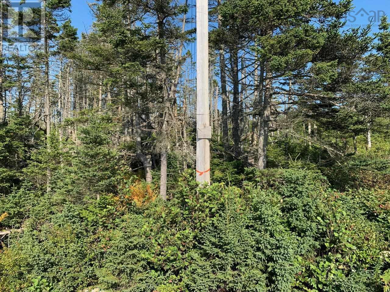 Lot A9 Ostrea Lake Road, Ostrea Lake, Nova Scotia  B0J 2L0 - Photo 2 - 202125328