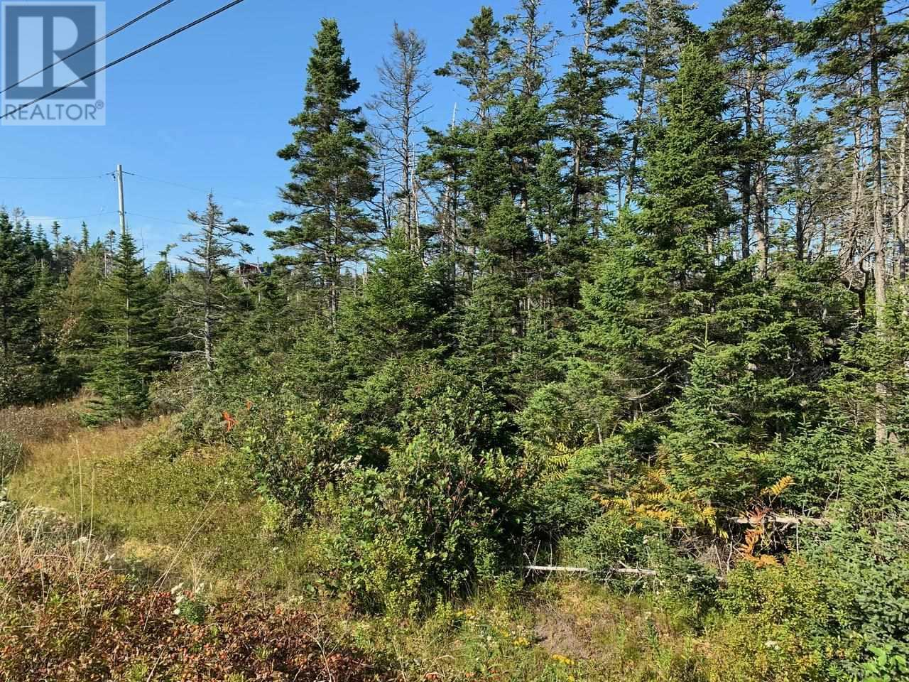 Lot A9 Ostrea Lake Road, Ostrea Lake, Nova Scotia  B0J 2L0 - Photo 3 - 202125328