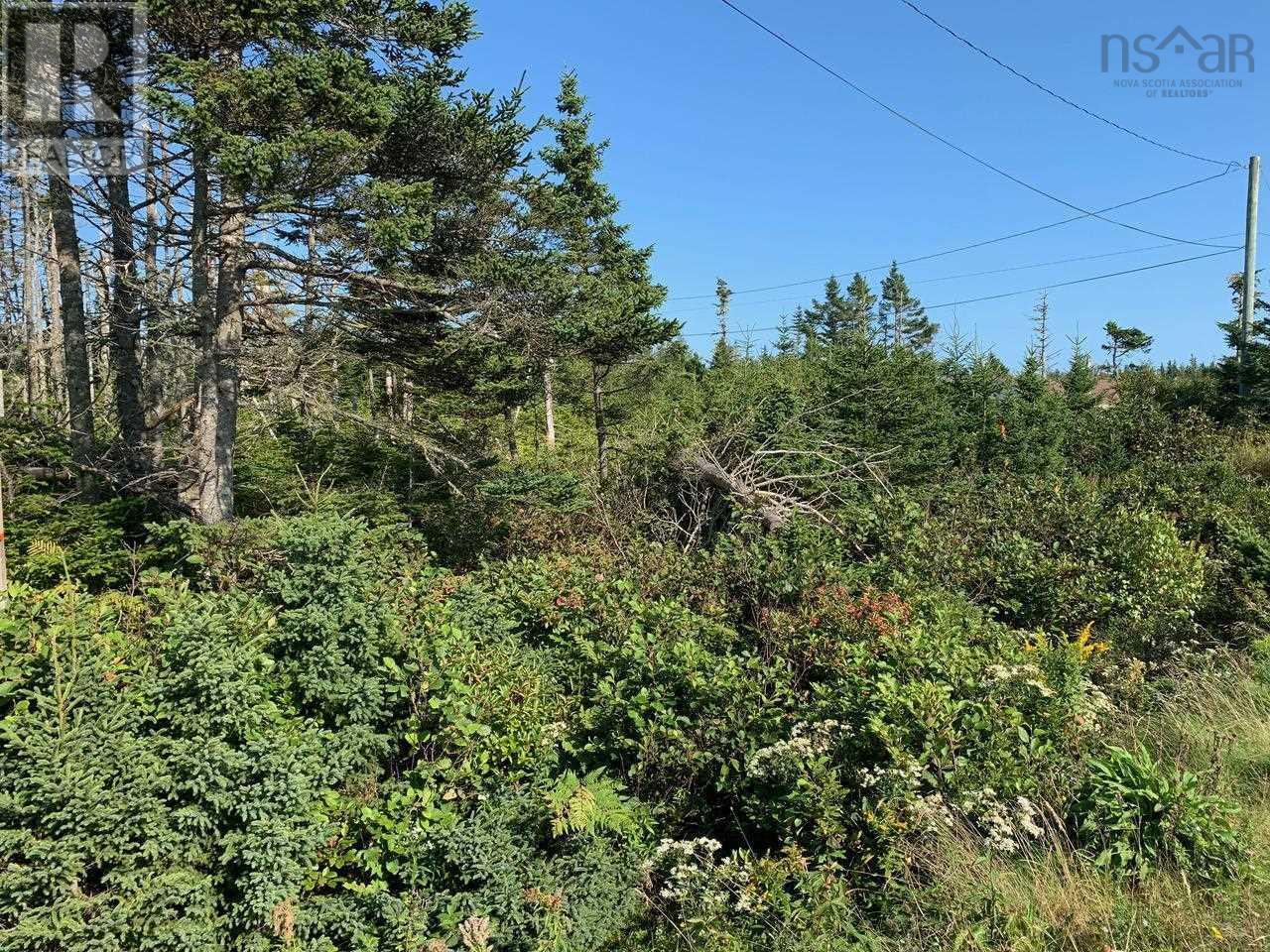 Lot A9 Ostrea Lake Road, Ostrea Lake, Nova Scotia  B0J 2L0 - Photo 5 - 202125328