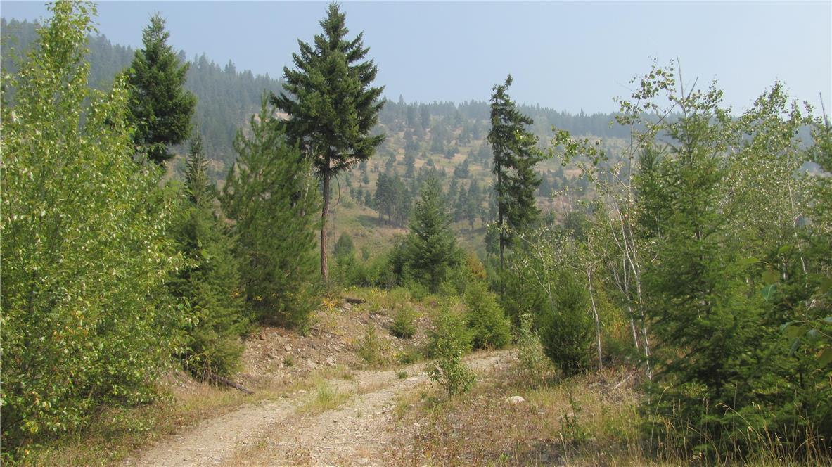 136acres Sugar Lake-Sihlis Road,, Vernon, British Columbia  V1H 2B1 - Photo 20 - 10139930